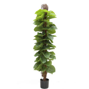 Artificial Bonsai Philodendro Plant - Aramis Trading
