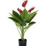 Artificial Anthuriums Plant - Aramis Trading