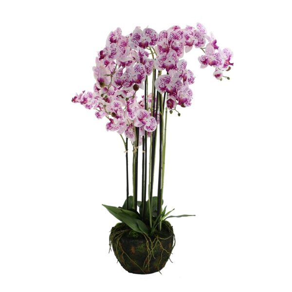 9 Pcs Butterfly Orchid On Foam Base - Aramis Trading