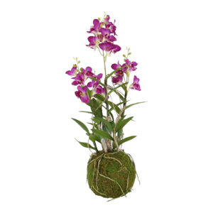 4 Pcs Orchid On Foam Base - Aramis Trading