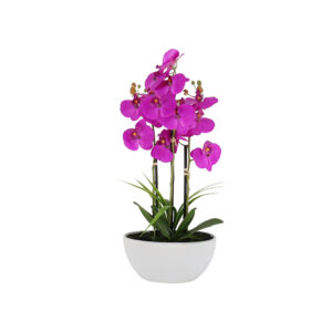 7 Pcs Butterfly Orchid On White Ceramic Pot - Aramis Trading